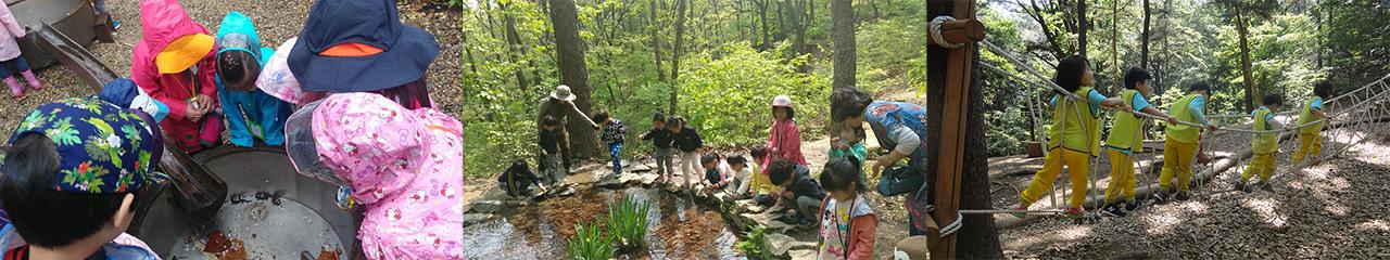 청룡산 유아숲체험